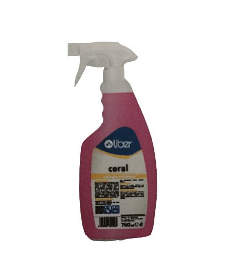 Coral detergente pulibagno anticalcare Spray per rubinetterie, Sanitari